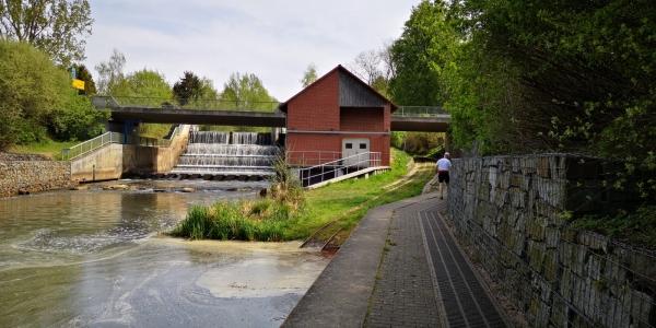 Spreewald-2019